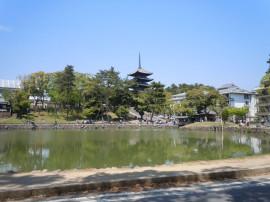 猿沢池から興福寺を望む