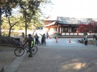 奈良の秋を満喫